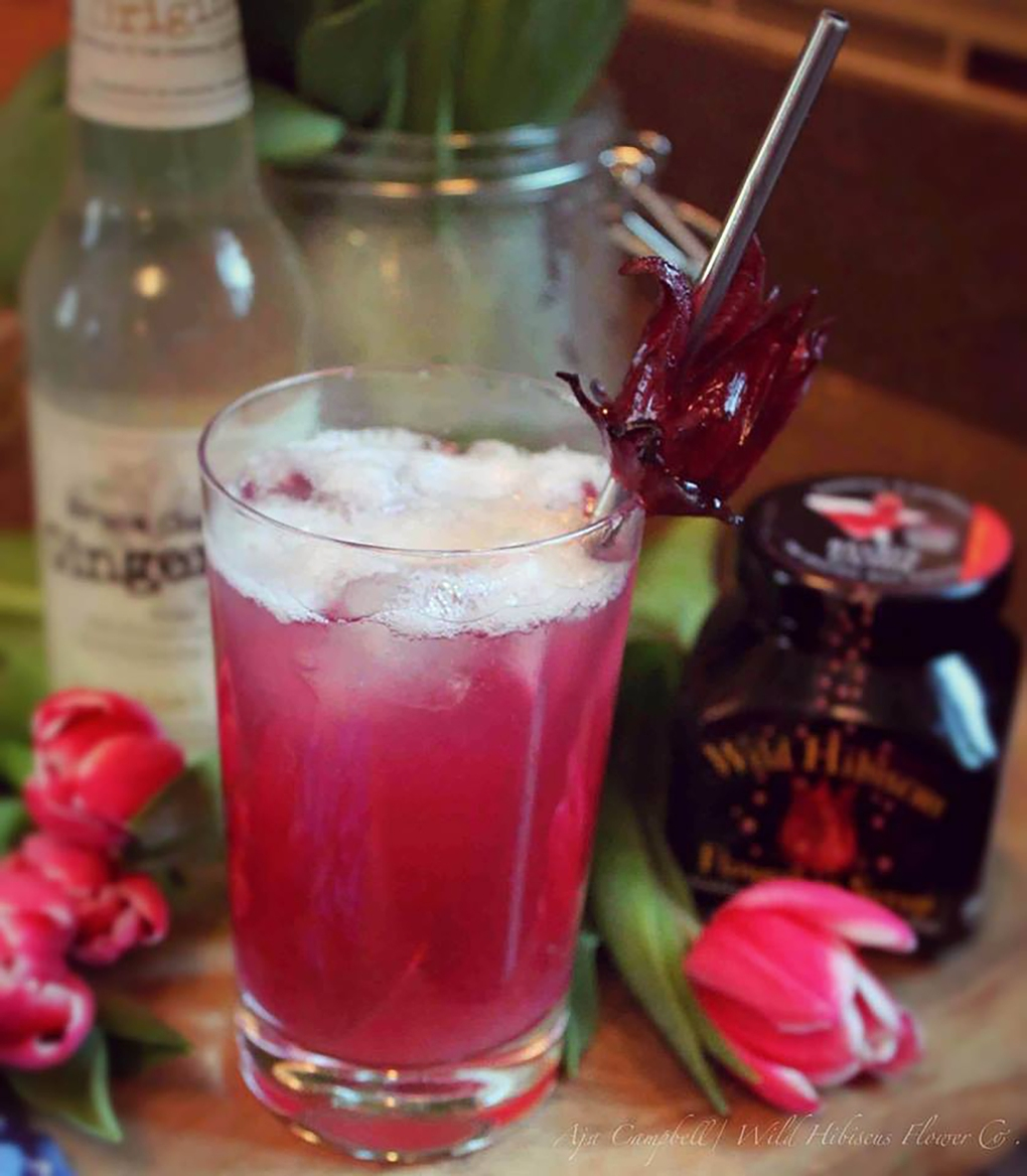 Wild Hibiscus Cocktail - High Res
